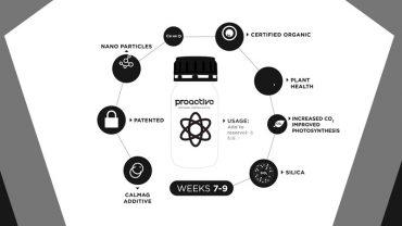 Proactive-Nano